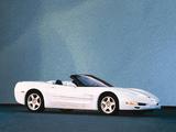 Corvette Convertible (C5) 1998–2004 images