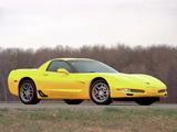 Corvette Z06 (C5) 2001–03 pictures