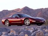 Corvette Coupe 50th Anniversary (C5) 2002–03 photos