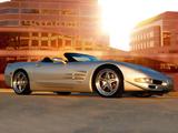 Skunk Werkes Speedster (C5) 2003 pictures