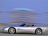 Skunk Werkes Speedster (C5) 2003 wallpapers