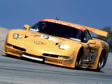 Pictures of Corvette C5R 2001–04
