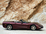 Corvette Convertible 50th Anniversary (C5) 2002–03 wallpapers