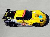 Corvette C6.R GT2 2010 pictures