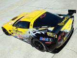 Corvette C6.R GT2 2010 wallpapers