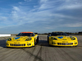 Images of Corvette C6.R GT2 2010