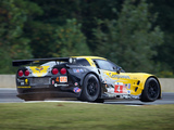 Photos of Corvette C6.R GT2 2010