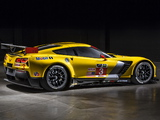 Images of Corvette C7.R GT2 (C7) 2014