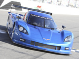 Corvette Daytona Prototype 2012 pictures