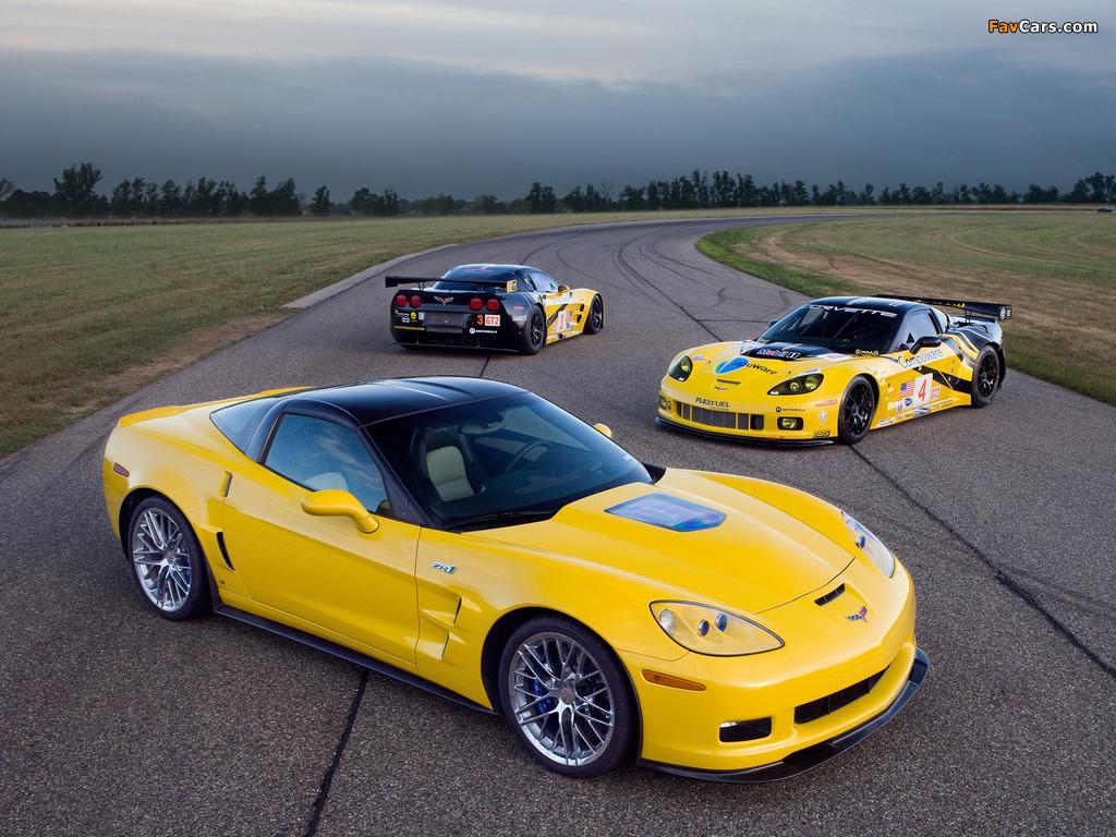 Pictures of Corvette (1024 x 768)