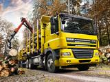 DAF CF85.460 6x4 FAT Sleeper Cab Timber Truck 2006–13 wallpapers