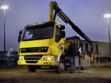 Photos of DAF LF45 4x2 FA Day Cab Crane 2006–13