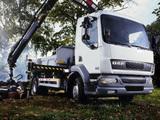 DAF LF55 4x2 FA Day Cab Crane 2006–13 wallpapers