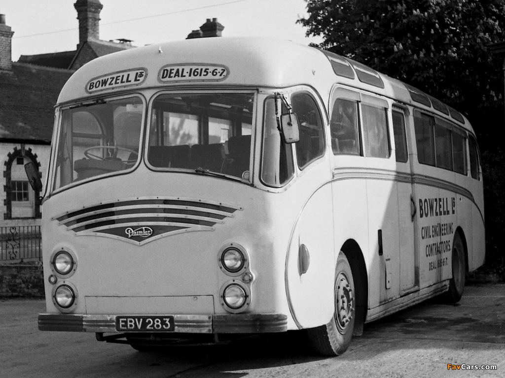 Daimler Freeline D650 HS Duple (C41C) 1951–64 wallpapers (1024 x 768)