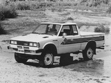 Datsun Pickup 4WD King Cab JP-spec (720) 1980–85 wallpapers