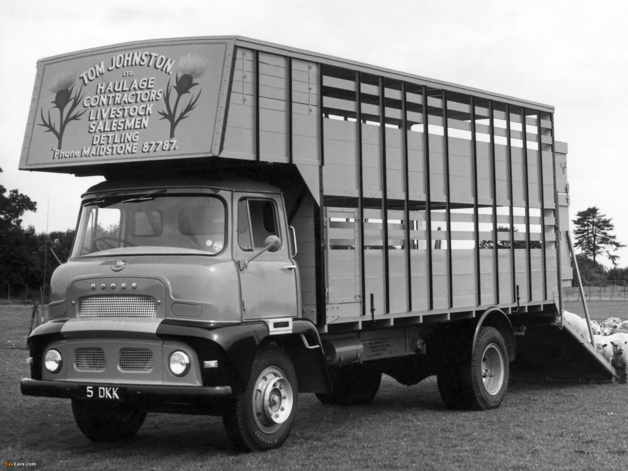 Photos of Dodge 3144/3145 1956–57 (2048 x 1536)
