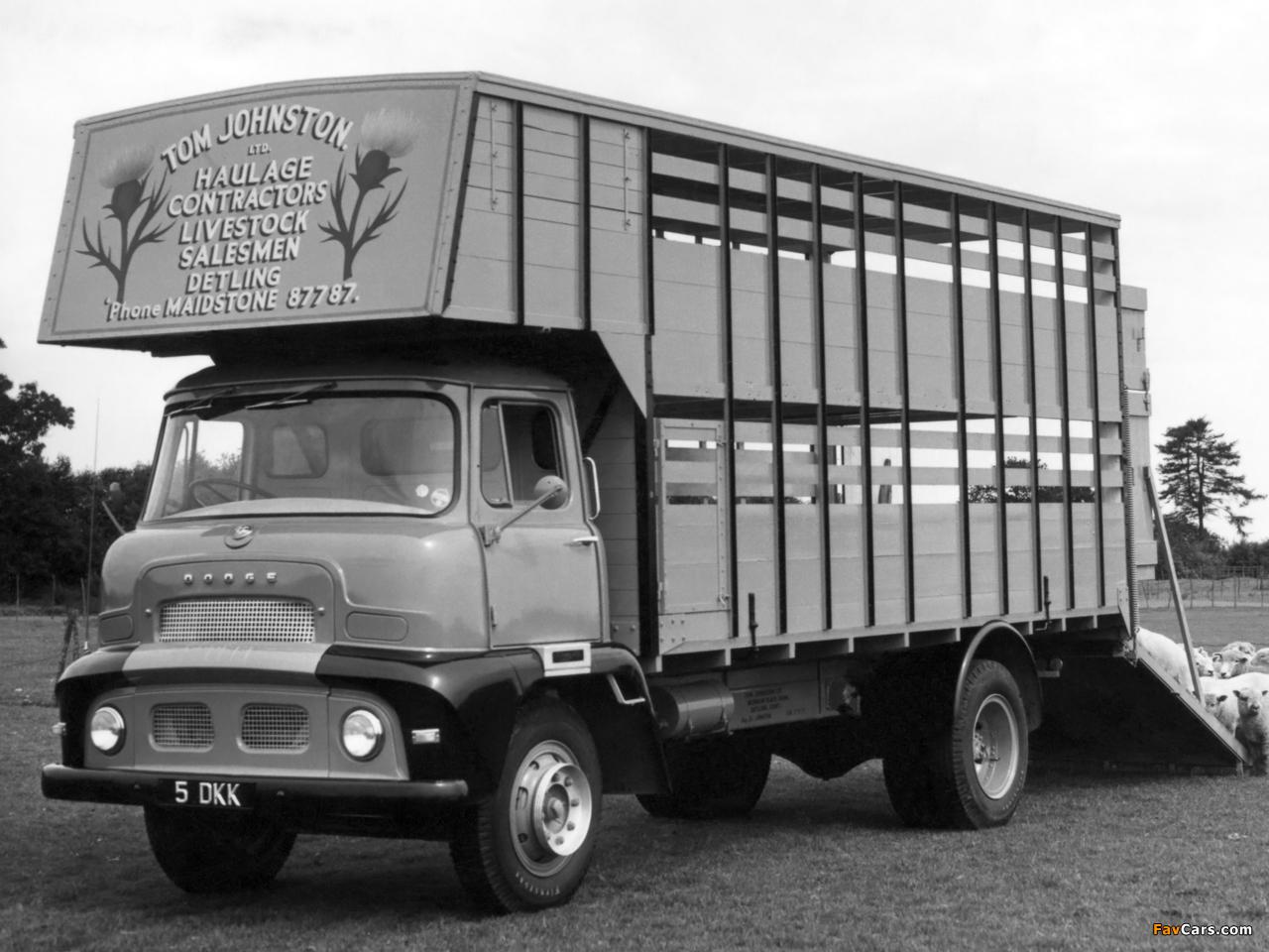 Photos of Dodge 3144/3145 1956–57 (1280 x 960)