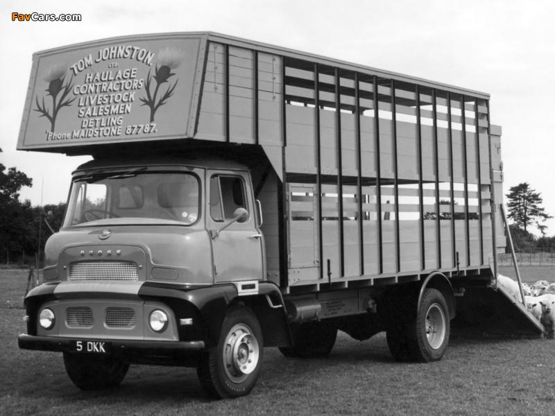 Photos of Dodge 3144/3145 1956–57 (800 x 600)