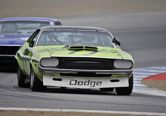 Dodge Challenger Trans Am Race Car 1970 Images