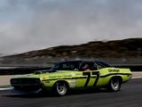 Dodge Challenger Trans-Am Race Car 1970 pictures