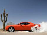 Dodge Challenger SRT8 (LC) 2008–10 images
