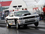 Dodge Challenger R/T Drag Pak (LC) 2009–10 pictures