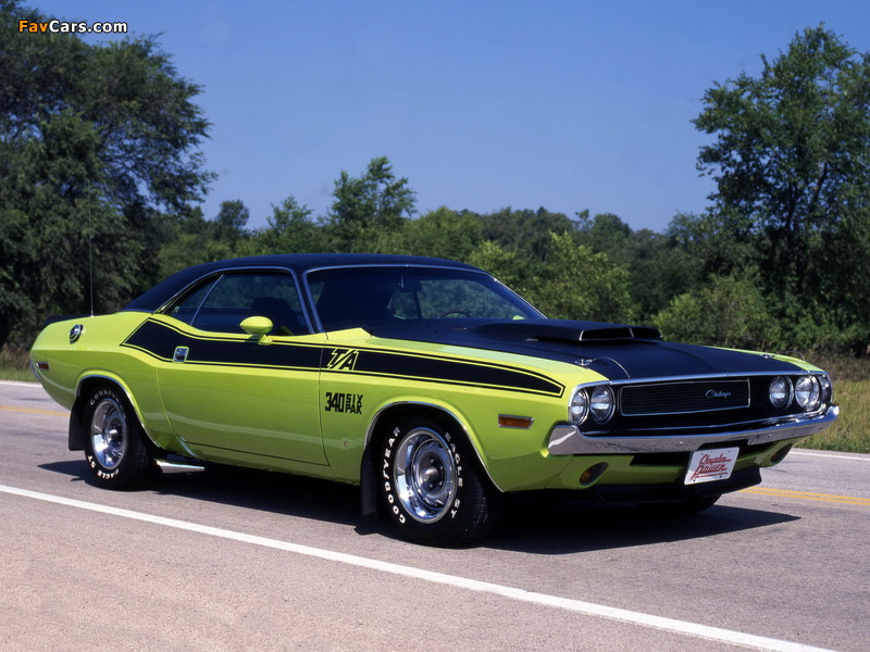 Images of Dodge Challenger T/A 340 Six Pack 1970 (800 x 600)