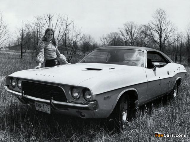 Images of Dodge Challenger 1972 (640 x 480)