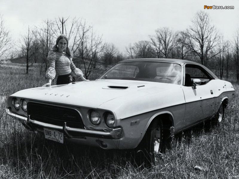 Images of Dodge Challenger 1972 (800 x 600)