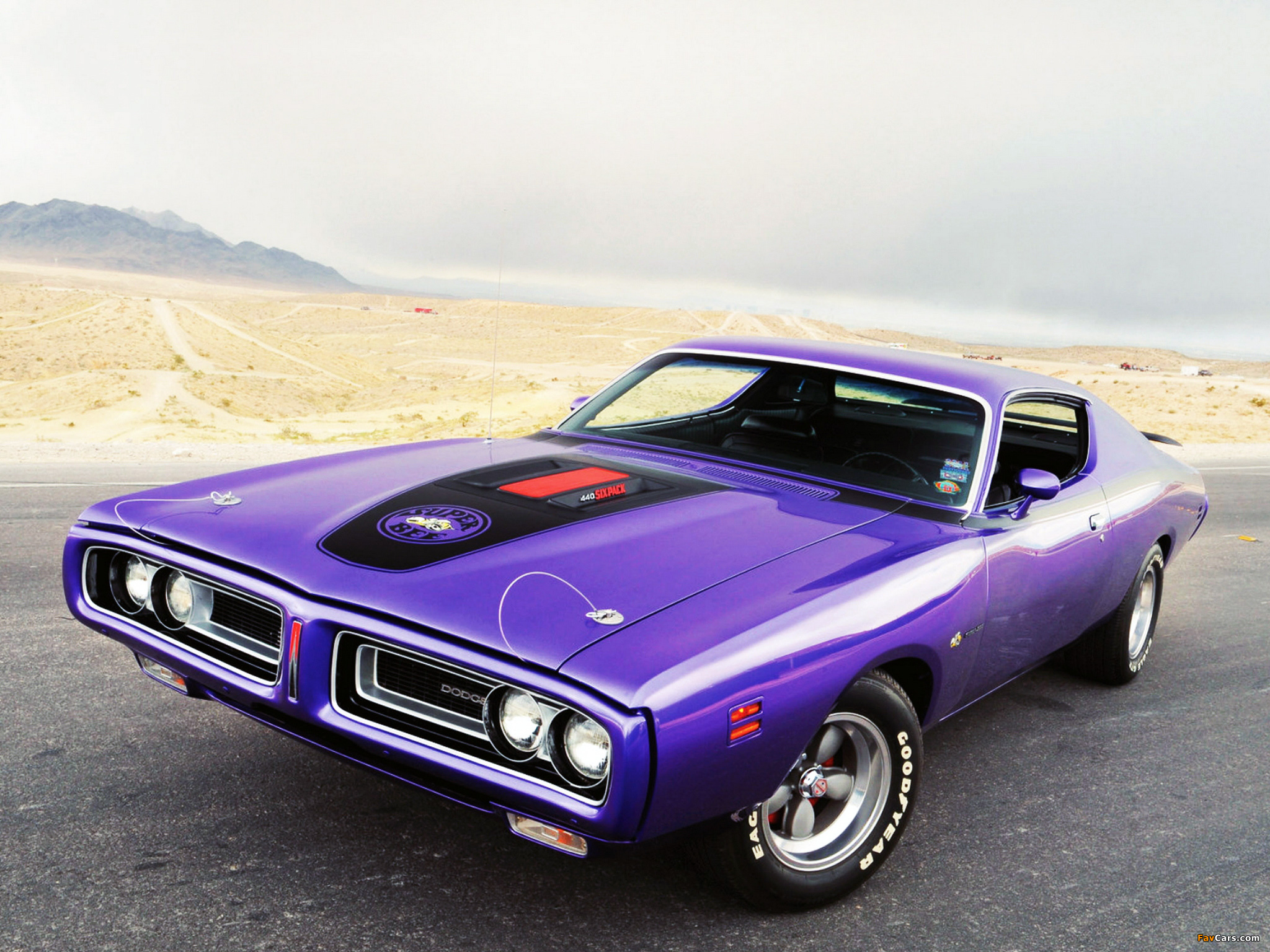 Dodge Charger Super Bee 1971 pictures (2048 x 1536)