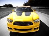 Dodge Charger SRT8 Super Bee 2012 images
