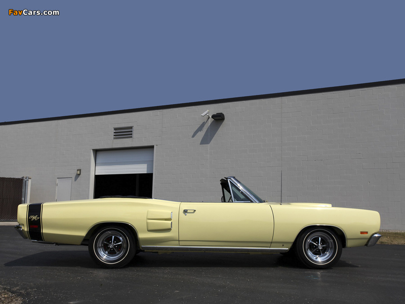 Dodge Coronet R/T Convertible 1969 wallpapers (800 x 600)