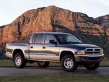 Pictures of Dodge Dakota Quad Cab 2000–04