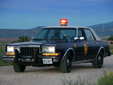 Pictures of Dodge Diplomat Police Car 1981–89