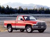 Pictures of Dodge Ram 1500 Regular Cab 1994–2001