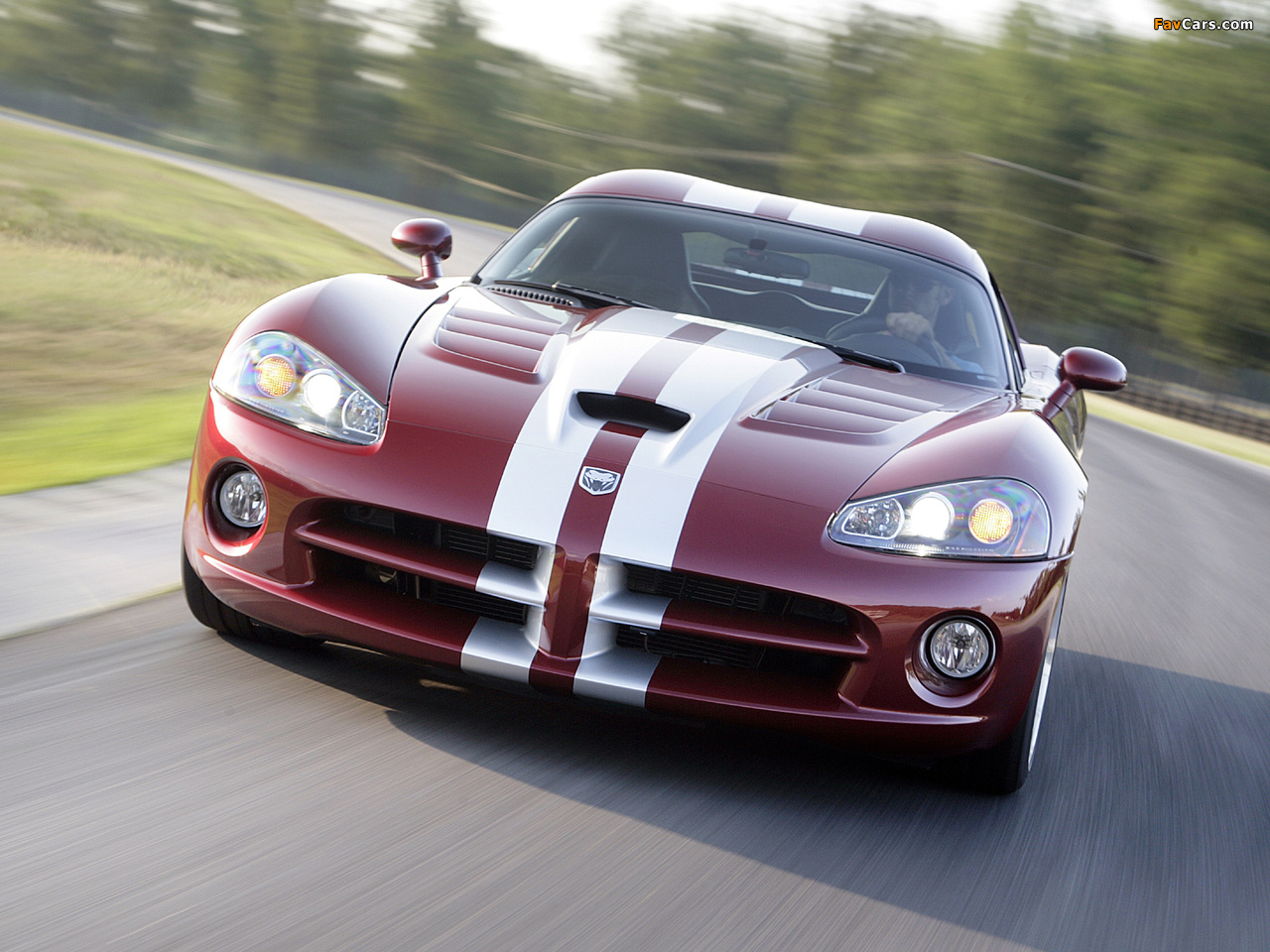 Pictures of Dodge Viper SRT10 Coupe 2008–10 (1280 x 960)
