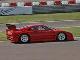 Ferrari 288 GTO Evoluzione 1987 images