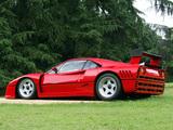Photos of Ferrari 288 GTO Evoluzione 1987