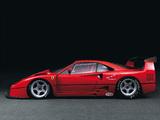 Ferrari F40 LM 1988–94 images