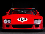 Ferrari F40 LM 1988–94 wallpapers