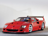 Photos of Ferrari F40 LM 1988–94