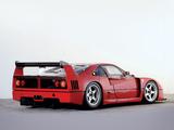 Ferrari F40 LM 1988–94 wallpapers