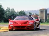 Ferrari F50 1995–97 images
