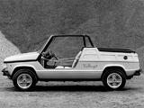 Images of Fiat 127 Village Concept 1974