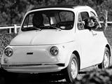 Fiat 500 R (110) 1972–75 pictures