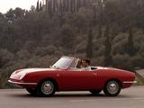 Fiat 850 Spider 1965–68 images