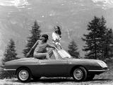 Photos of Fiat 850 Spider 1965–68