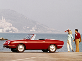 Pictures of Fiat 850 Spider 1965–68