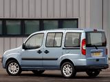 Photos of Fiat Doblò Panorama UK-spec (223) 2005–09