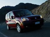 Photos of Fiat Doblò Panorama (223) 2005